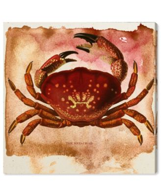 The Red Crab Canvas Art, 12