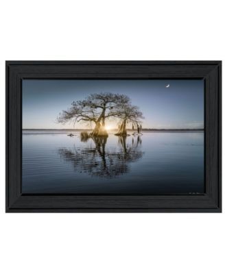 Tree Reflections by Moises Levy, Ready to hang Framed Print, Black Frame, 21