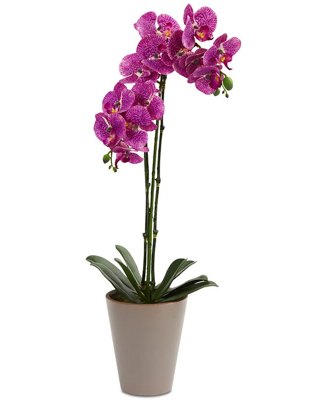"""Nearly Natural 24"""" Speckled Phalaenopsis Orchid Artificial Arrangement with Vase"""