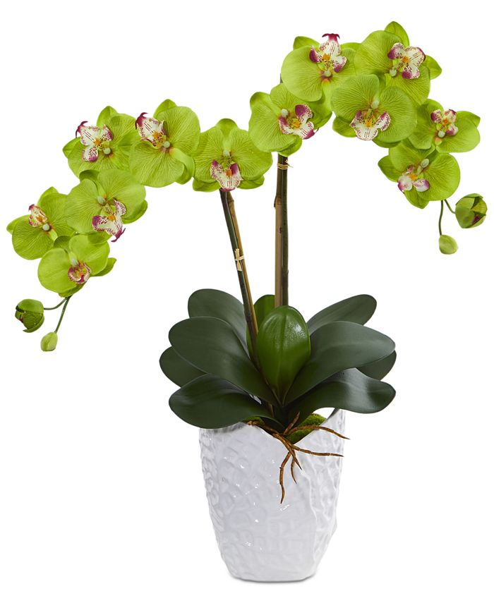 Nearly Natural - Double Phalaenopsis Orchid Artificial Arrangement in White Ceramic Vase