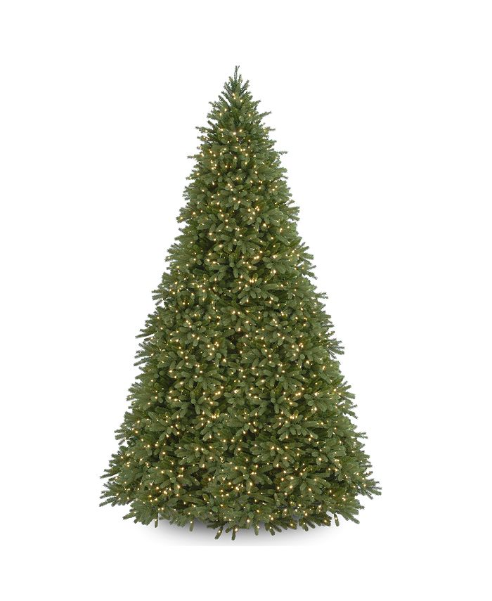 National Tree Company - National Tree 12' Feel Real Jersey Fraser Fir Tree with 2000 Clear Lights