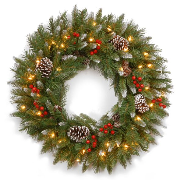 """National Tree Company 30"""" Frosted Berry Wreath with 100 Clear Lights"""