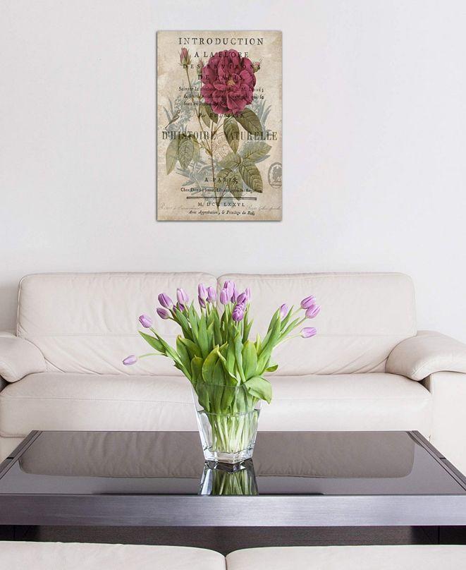"iCanvas ""Botanique I"" by Deborah Devellier Gallery-Wrapped Canvas Print (26 x 18 x 0.75)"