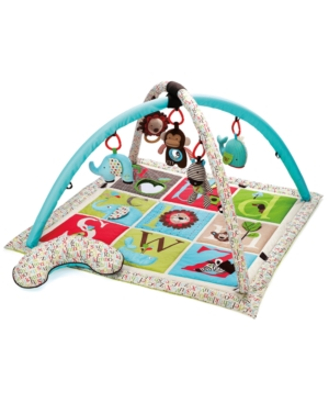 Skip Hop Baby Toy, Abc Activity Gym