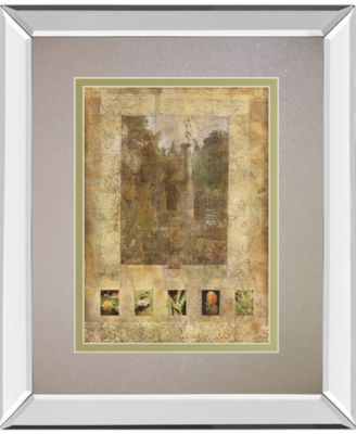 "Botany Journal II by Kemp Mirror Framed Print Wall Art, 34"" x 40"""