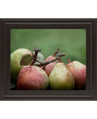 "Comice Pear II by Rachel Perry Framed Print Wall Art, 22"" x 26"""