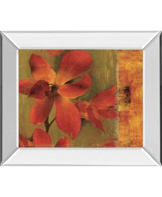"""Crimson Garden by Asia Jensen Mirror Framed Print Wall Art, 22"""" x 26"""""""