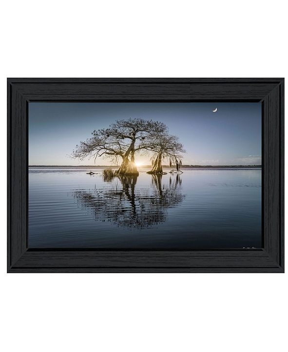 """Trendy Decor 4U Tree Reflections by Moises Levy, Ready to hang Framed Print, Black Frame, 21"""" x 15"""""""