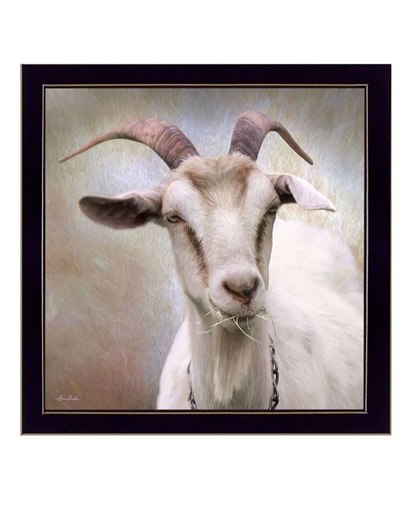 "Trendy Decor 4U Up Close Goat By Lori Deiter, Printed Wall Art, Ready to hang, Black Frame, 14"" x 14"""