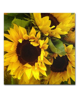 "'Sunflowers' Square Canvas Print by Amy Vangsgard, 24"" x 24"""