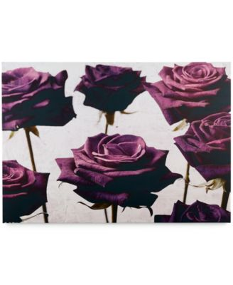 Graham & Brown Canvas Velvet Roses Wall Art