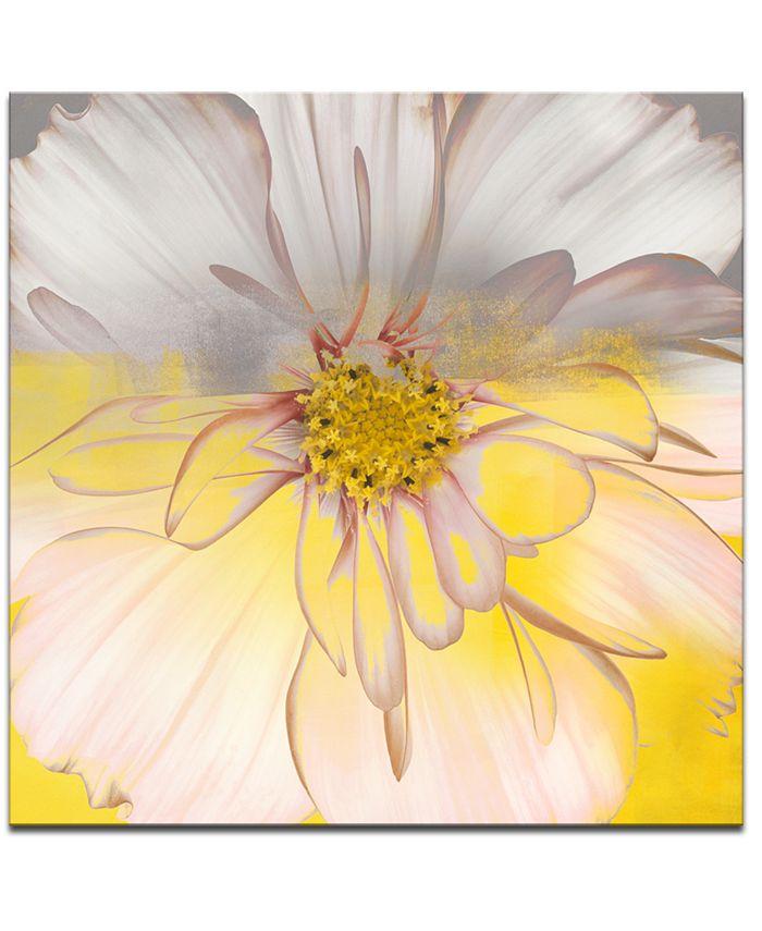 Ready2HangArt - 'Painted Petals XXXIV' Canvas Wall Decor