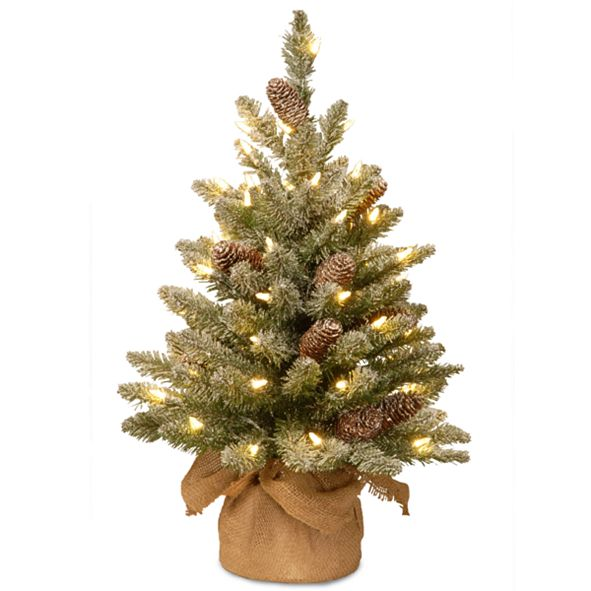 National Tree Company 2' Snowy Concolor Fir Small Tree in Burlap with Snowy Cones & 50 Warm White Battery Operated LEDs with Timer