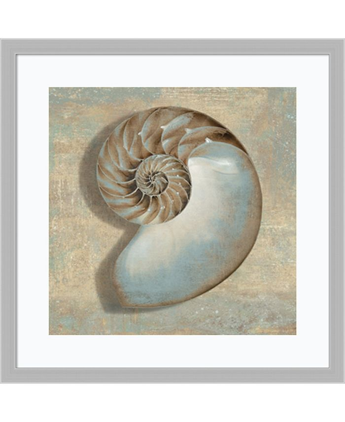 Amanti Art - Aqua Nautilus 27x27 Framed Art Print