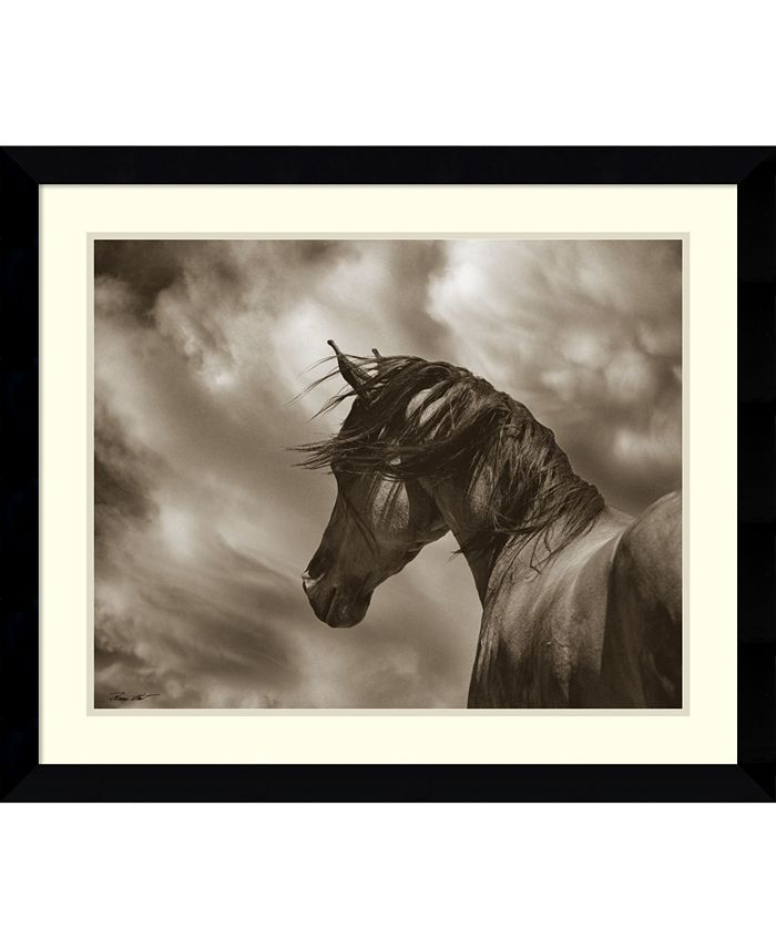 Amanti Art - The Renegade Horse 33x28 Framed Art Print