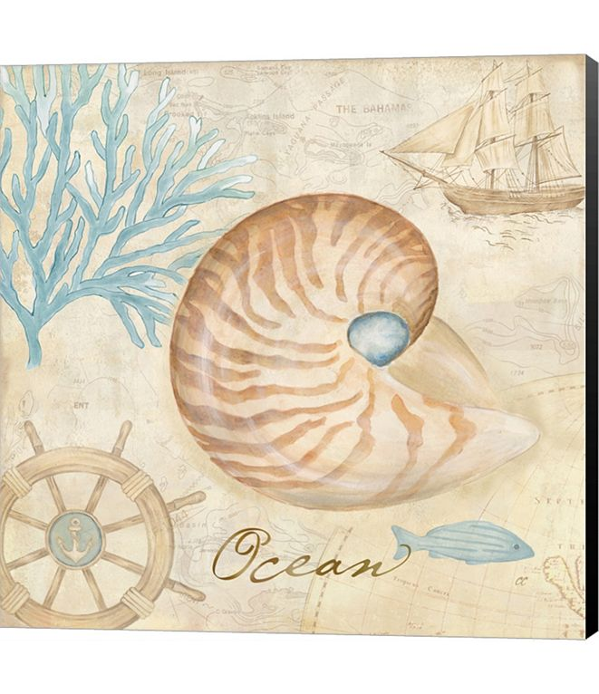 Metaverse Nautical Shells III by Cynthia Coulter Canvas Art