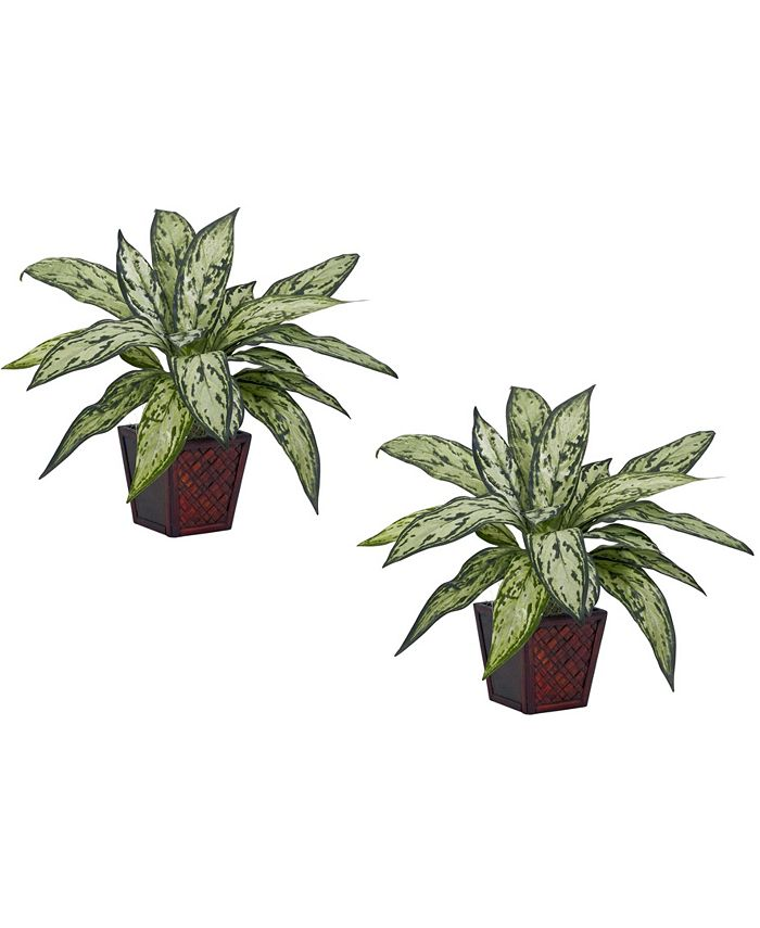 Nearly Natural - Silver Queen Silk Plant, Set of 2