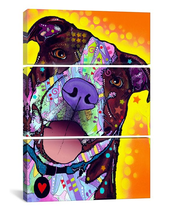 """iCanvas Daisy Pit by Dean Russo Gallery-Wrapped Canvas Print - 60"""" x 40"""" x 1.5"""""""