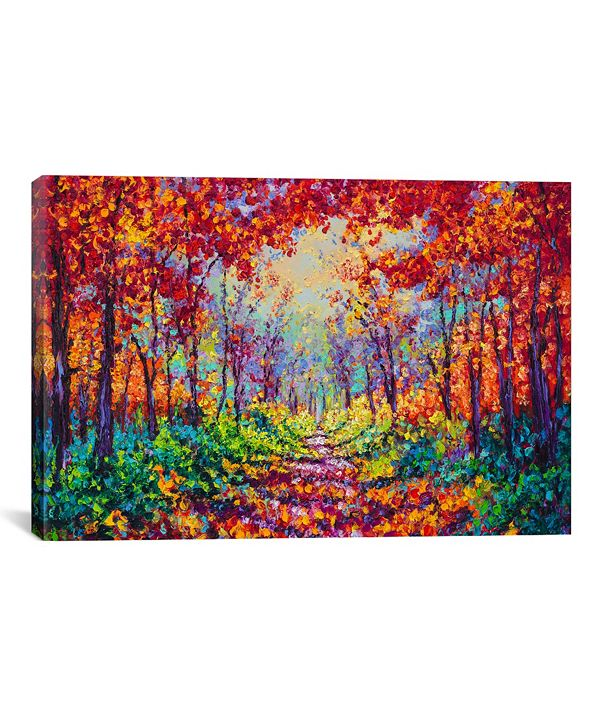 iCanvas  Luminous by Kimberly Adams Wrapped Canvas Print Collection