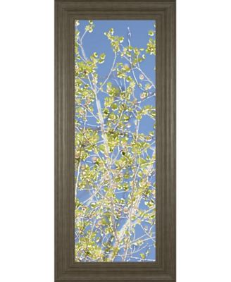 "Spring Poplars Il by Sharon Chandler Framed Print Wall Art - 18"" x 42"""