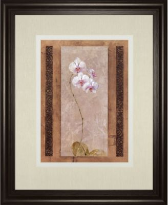 """Contemporary Orchid I by Carney Framed Print Wall Art, 34"""" x 40"""""""