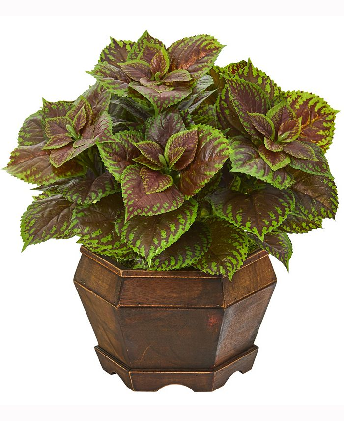 Nearly Natural - 17in. Coleus Artificial Plant in Decorative Planter Real Touch