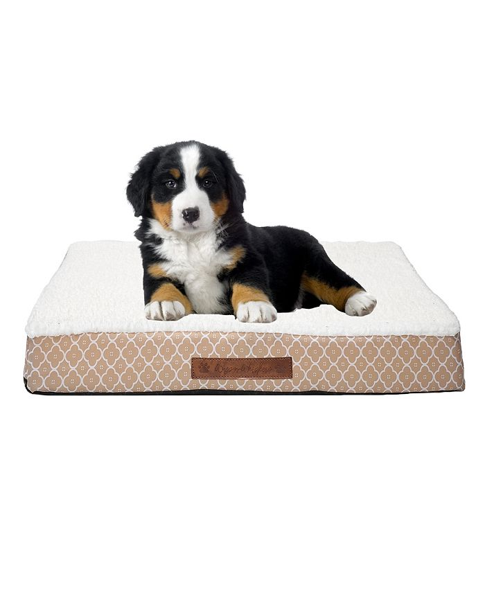 Wags n Whiskers - Angus Trellis Small Orthopedic Pet Bed
