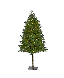Nearly Natural Swiss Alpine Artificial Christmas Tree with 250 Clear LED Lights and 450 Bendable Branches