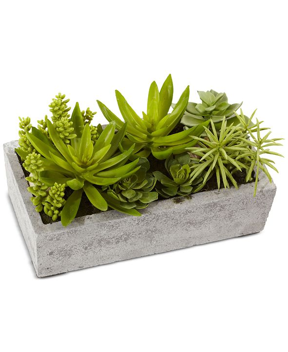 Nearly Natural Artificial Succulent Garden with Concrete Planter