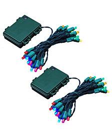 LumaBase Set of 2 Battery Operated LED Mini String Lights
