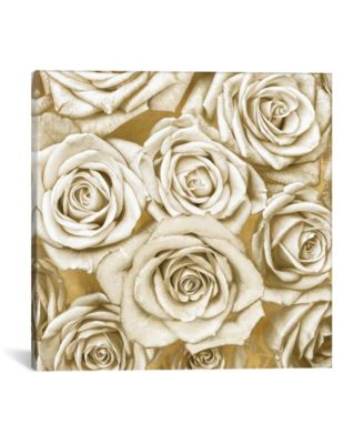 "Ivory Roses On Gold by Kate Bennett Wrapped Canvas Print - 18"" x 18"""