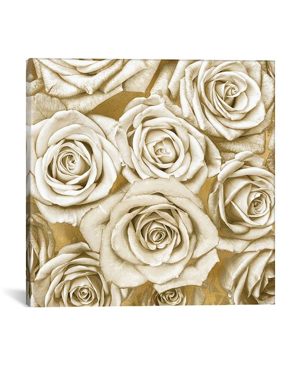 iCanvas  Ivory Roses On Gold by Kate Bennett Wrapped Canvas Print Collection