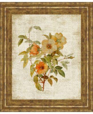 "Roses on Newsprint I by Lanie Loreth Framed Print Wall Art - 22"" x 26"""