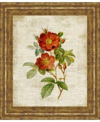 "Roses on Newsprint Il by Lanie Loreth Framed Print Wall Art - 22"" x 26"""
