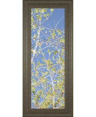 "Spring Poplars III by Sharon Chandler Framed Print Wall Art - 18"" x 42"""