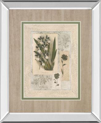 "Histoire Du Orchid VI by Carney Mirror Framed Print Wall Art, 34"" x 40"""