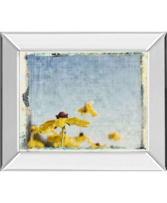 Blackeyed Susan's II by Meghan Mcsweeney Mirror Framed Print Wall Art, 22