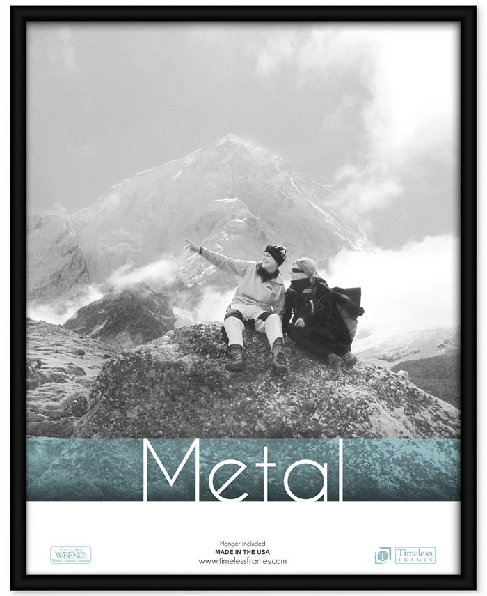 Timeless Frames - , 18x24 Metal Frame