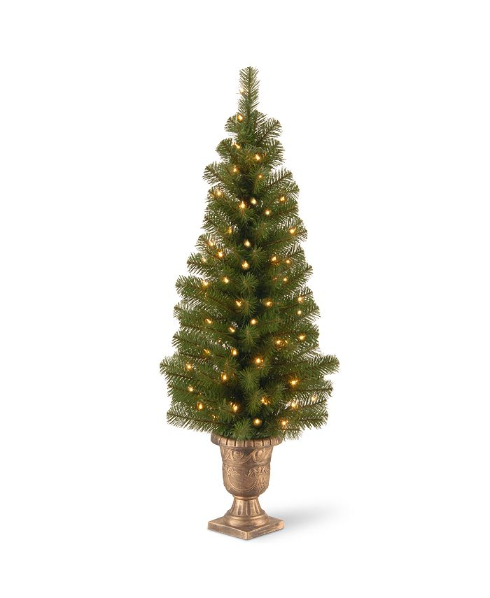 """National Tree Company - 4' Montclair Spruce Entrance Tree in 10"""" Black/Gold Plastic Pot with 50 Clear Lights"""