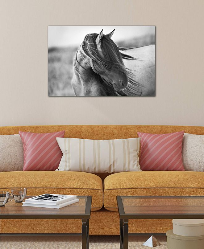 "iCanvas ""Fierce Grace"" by Tony Stromberg Gallery-Wrapped Canvas Print"