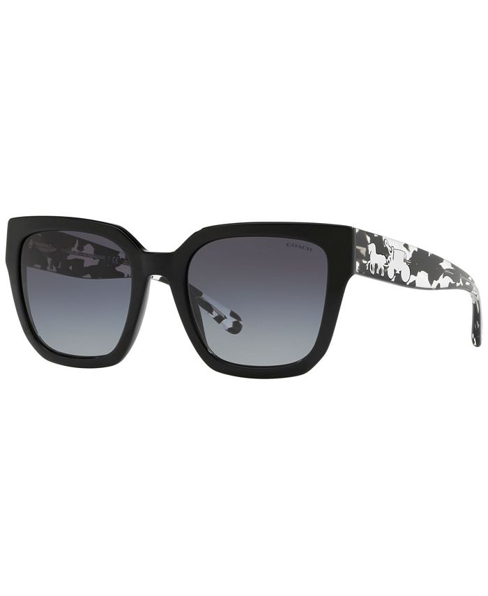 COACH - Sunglasses, HC8249 53 L1049