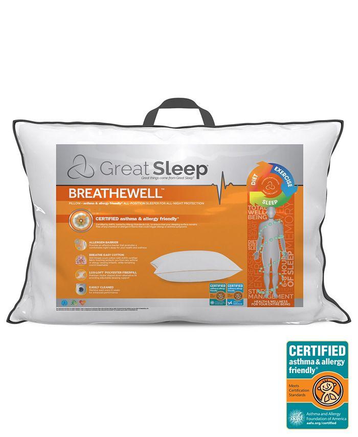Great Sleep -