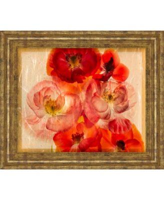 "Papaver Dreams I by Harold Davis Framed Print Wall Art, 22"" x 26"""