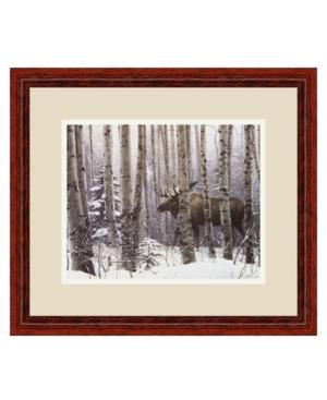 Amanti Art A Walk In the Woods Framed Art Print by Stephen Lyman
