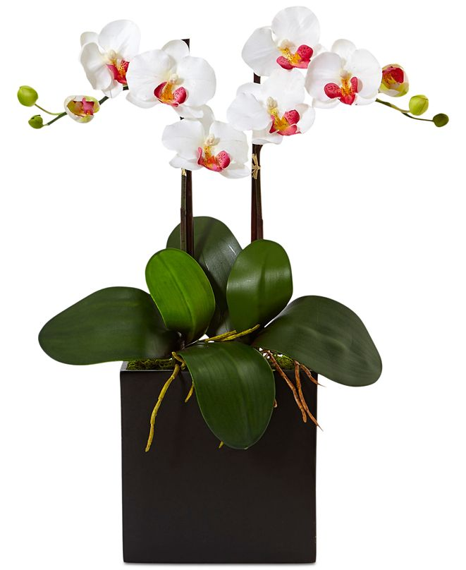 Nearly Natural Double Mini Phalaenopsis Orchid Artificial Plant in Black Vase