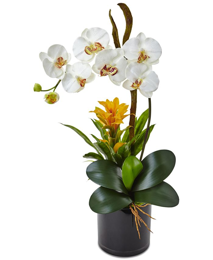 Nearly Natural - Orchid & Bromeliad Artificial Arrangement in Glossy Black Cylinder Vase