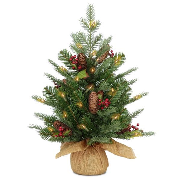 National Tree Company 2' Feel Real(R) Nordic Spruce Small Tree with Cones & Red Berries in Burlap with 50 Warm White LED Lights wandTimer