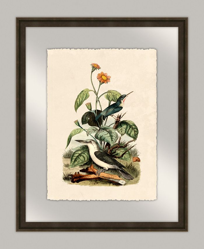 Melissa Van Hise Oiseaux V Framed Giclee Wall Art 20 X 25 X 2 Reviews Wall Art Macy S