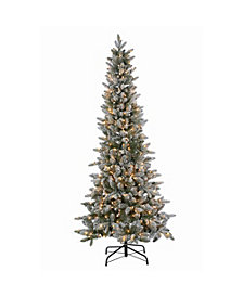 Sterling 6.5Ft. Lightly Flocked Canyon Fir with 350 Clear Lights