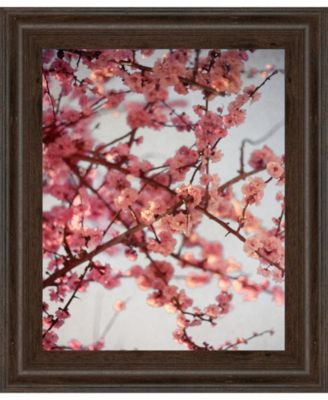"""Cherry Blossoms I by Susan Bryant Framed Print Wall Art, 22"""" x 26"""""""